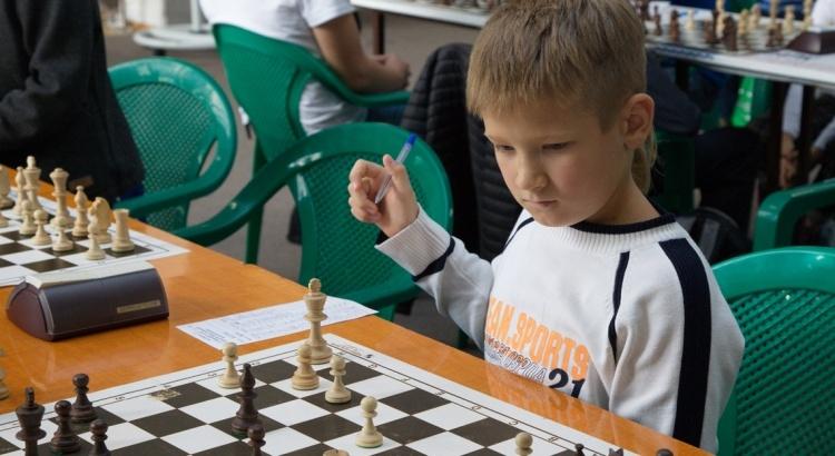 шахматы5